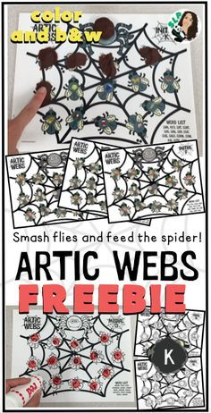 A fun and engaging way to work on artic! Help the spider catch the flies!
