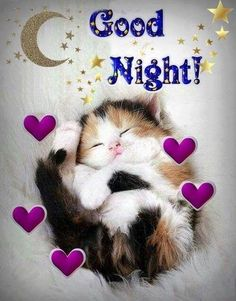 Good night sister and yours, sweet dreams 😋🌜💘🌛🌜☝🌛💖. Good Night Cat, Good Night Sister, Good Night Prayer, Good Night Sleep Tight, Cute Good Night, Good Night Everyone, Good Night Friends, Good Night Blessings, Good Night Sweet Dreams