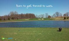 Born to golf. Forced to work. #livingthegreen #golf #golfer #golfcourse #golfing #golfchannel #pgatour #pga #lpga