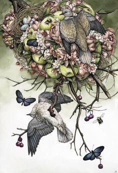 """""""Collared Doves"""" 2015 Lauren Marx"""