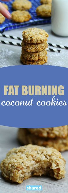 If you are looking for a yummy way to boost your metabolism in the morning you have got to try these Fat Burning Coconut Cookies. They are jam-packed with protein and yummy natural flavors and sweetness that will keep you satisfied and ready to go until Healthy Cookies, Healthy Baking, Healthy Desserts, Eating Healthy, Clean Eating, Keto Protein Bars, Protein Powder Cookies, Peanut Butter Protein Cookies, Protein Lunch