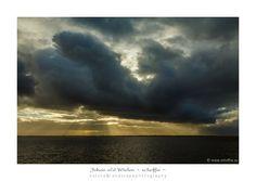 ~ schoffie′s nature ~ Johan van der Wielen