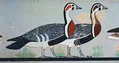 Ancient Egyptian Paintings, Ancient Egypt Art, Egyptian Art, Ancient History, Art History, Le Nil, Animal Drawings, Drawing Animals, Bird Art