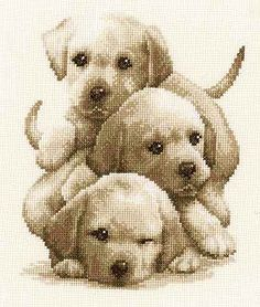 Labrador Puppies Cross Stitch Kit By Vervaco