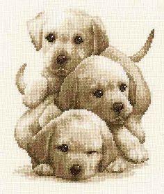 Labrador Puppies Cross Stitch Kit By Vervaco Cross Stitch Numbers, Cross Stitch Bird, Beaded Cross Stitch, Cross Stitch Animals, Counted Cross Stitch Kits, Cross Stitch Charts, Cross Stitching, Cross Stitch Embroidery, Modern Cross Stitch Patterns