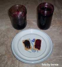 Honeyberry Jam and Jelly