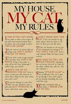 "AMEN!! Especially the saying ""it's just a cat"" my Roo Roo means the world to me"