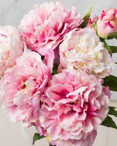 Pink Peony Flower St