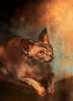 Handsome Sphynx by `alicexz on deviantART :3 Pretty kitty!