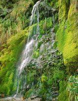 Caída de agua en el páramo de Chingaza.