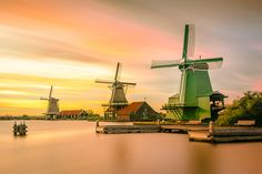 When the Winds of Change Blow, Some People Build Walls and Others Build Windmills - Chinese Proverb