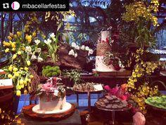 Mesa do final de semana com decor @mbacellarfestas !  #maymacarons #macarons #mesasdecoradas #macaronsparacasamento #macaronspersonalizados  #Repost @mbacellarfestas  Pra festa de hoje entre troncos tulipas boleiras de cobre bandejas de madeira estavam os bolos e os doces... festa linda! Obrigado aos super parceiros @andrepedrotti @festahmoveis @sriluminacao @mackproducoes @groofboogaloo @djjocaguarim @casadasfestas70 #mbacellar #mbacellarfestas #party #wedding #flores #casamento