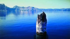 MessageToEagle.com – Nature has a funny way of telling us there is still a lot we don't know about the world around us. The Old Man of the Lake is a mysterious tree trunk that has defied the laws of physics for 120 years. Floating in Crater Lake, the deepest lake in United States, one can say …