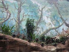 Wandmalerei im Darwineum (c) Frank Koebsch 2 - Das Darwineum ist ein absolutes Highlight im Rostocker Zoo, mehr Informationen unter http://frankkoebsch.wordpress.com/2012/09/22/die-grosten-wandmalereien-in-rostock/