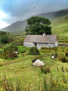 Connemara Cottage, Ireland