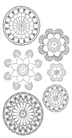 Flowers and leaves charts