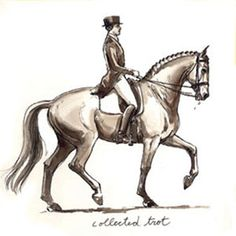 Half Pass at Collected Trot. Drawing by Sandy Rabinowitz ...