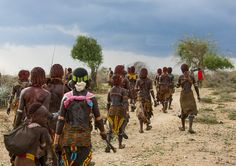Hamar Tribe Women With Whipped Backs At Bull Jumping Ceremony, Turmi, Omo Valley, Ethiopia