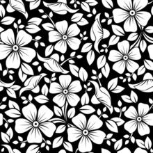 Draw Flower Patterns Wall Mural - Seamless pattern with flowers and leaves. - Wall murals and Wallpaper Murals of Black silhouette of rose. Wall mural renvation of your grey Space Black And White Flowers, Black And White Pictures, Flower Coloring Pages, Adult Coloring Pages, Free Background Patterns, Color By Number Printable, Black Silhouette, Floral Illustrations, Pattern Illustrations
