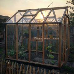 Ja tak! Nu med drivhus! Gro gro gro små agurker, tomater og chili! #gabrielash #julianaclassic @juliana_drivhuse @gabrielash1