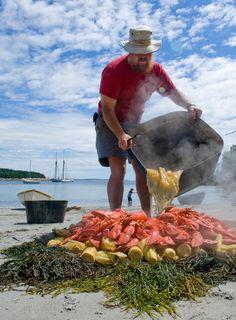 A Maine Lobster Boil. The Feast, Lobster bake on the beach, Marshall Island, Maine Connecticut, Maine, Lobster Bake, Marshall Islands, New Hampshire, Rhode Island, Cape Cod, Back Home, East Coast