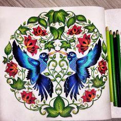 Jardim secreto, beija flor