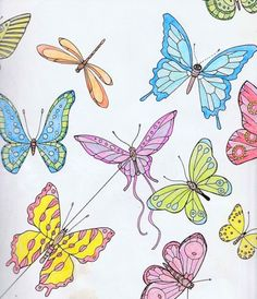 Birds Butterflies Colouring Book Using