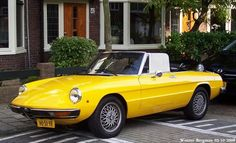 Alfa Romeo 2000 Spider Veloce 1981 Alfa Romeo Cars, Netherlands, Spider, Bmw, Classic, Sports, Autos, Nice Asses, The Nederlands