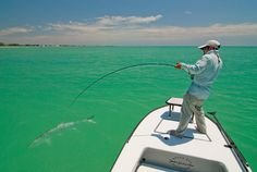 Damn I want to do this. Tarpon on a fly rod.