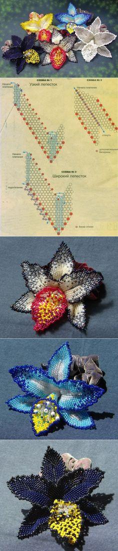 Орхидея мозаичным плетением / Цветы / Biserok.org