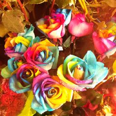 Rainbow Roses Taken at Metropolitan Market in Seattle, WA. No flash. Not edited. #iphone