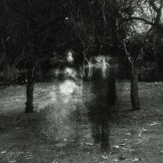 phantasma.