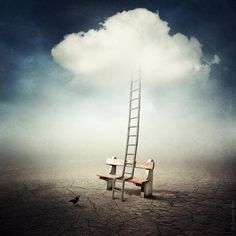 A ladder can mean a chance to gain new promotion, to scale new heights, success or spiritually it can mean meditation, prayer greater understanding of spiritual things Sarolta Bán