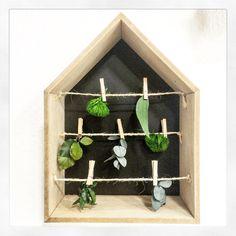 Design végétal, décoration intérieure. Végétaux stabilisés. Création et réalisation Adventive. Interior plant Designer