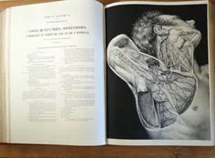 1837 Anatomie de l'Homme et Médecine Opératoire. Tome 6. Bourgery et Jacob. Human Anatomy Art, Skull Anatomy, Vintage Magazines, Vintage Books, Medical Pictures, Jean Baptiste, Chef D Oeuvre, Les Oeuvres, Book Art