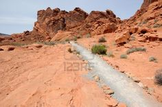 Trail through Stone Desert