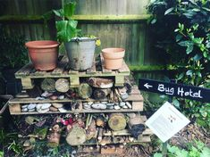 Our Bug Hotel is open, come on in | by Craig Freeman | Invironment | Medium