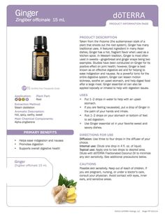 Ginger doTerra Essential Oils product information