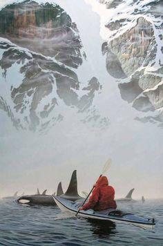 Kayaks and Orcas! Southeast Alaska