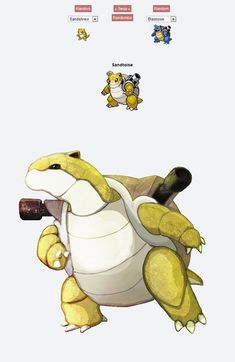 pokemon fusion pictures sandtoise