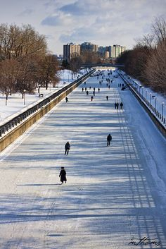 Rideau Canal, Ottawa Canada - the world's longest skating rink. it would be in Canada! Ottawa Canada, Canada Eh, Ottawa Ontario, Places To Travel, Places To See, Destinations, Angeles, Quebec City, Adventure Is Out There