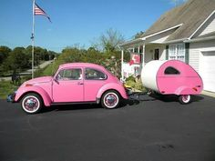 Pink Bug, the only kind of bug I like! LoL