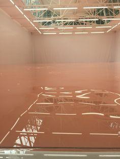 Swiss Pavilion, 56th Venice Biennale.