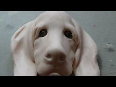 Sculpting a dogs head #pawgustart #sculpture polymer clay - YouTube