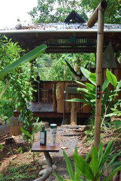 Yoga Farm Costa Rica- Looks perfect!!!