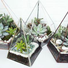 Glass Planter, Planters, Glass Terrarium, Diy Yard Decor, Target Decor, Forest Fairy, Forest Garden, Hanging Succulents, Flower Pots
