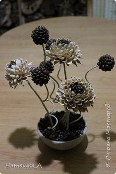 Кофейно-фисташковые цветы фото 2