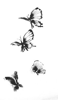 butterfly by leetecture, via Flickr