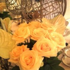 yellow roses beautiful