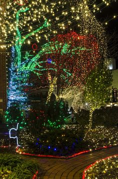 christmas lights fayetteville arkansas recent photos the commons getty collection galleries world map app